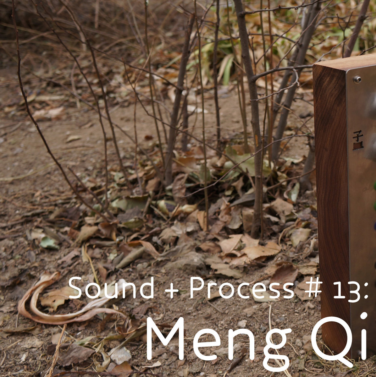 Meng Qi Interview